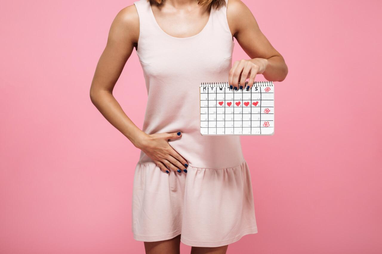 Plodné dny a výpočet ovulace (+ nejlepší ovulační test