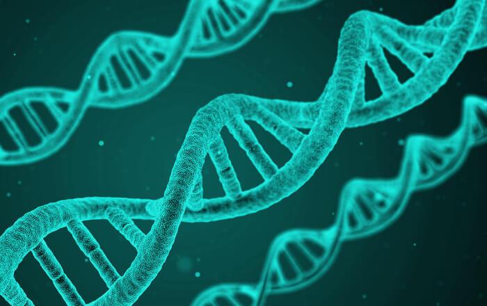 Genetická mutácia - príčiny nespavosti