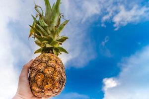 Ananás - Top 15 protizápalových jedál
