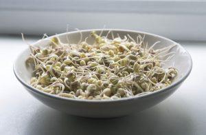 Klíčky mungo - Antihistamínové potraviny