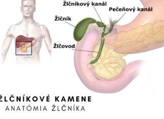 Žlčníkové kamene - anatómia žlčníka