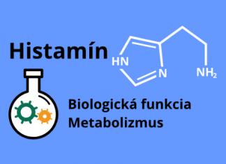 Histamín - biologická funkcia, metabolizmus