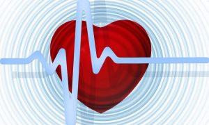Srdce tep
