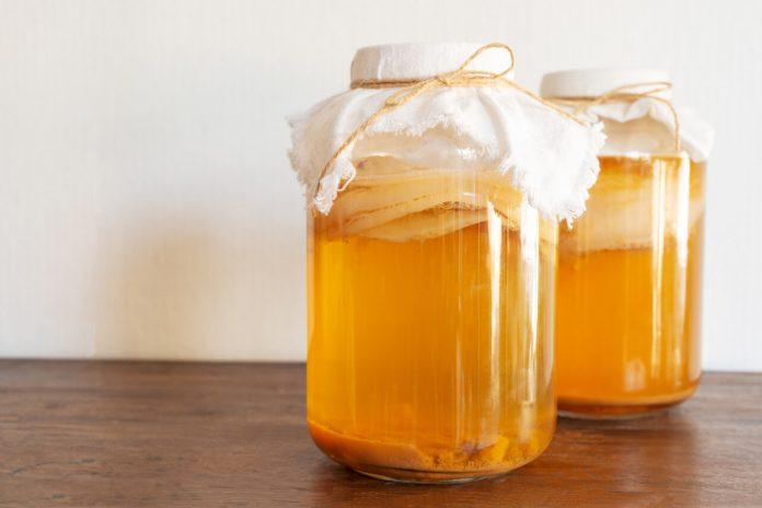 Kombucha - huba, z ktorej sa pripravuje nápoj
