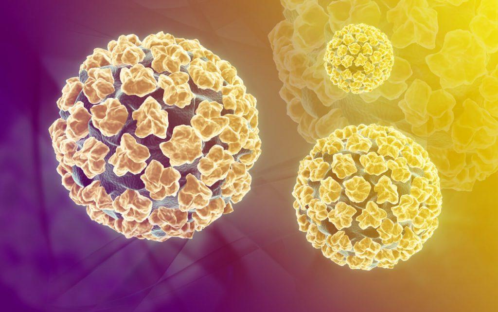 priznaky hpv virusu u muzov)