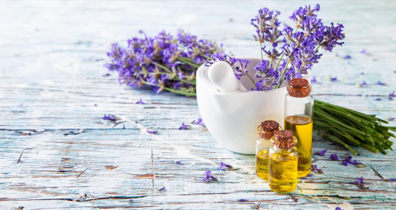 Levanduľa - bylinka vhodná na artrózu
